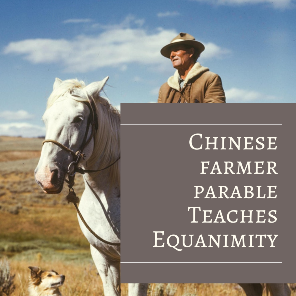 Chinese Farmer Parable